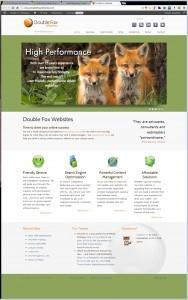 Double Fox Websites