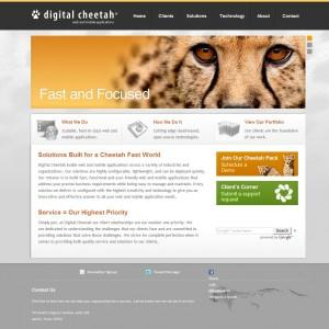 New Digital Cheetah Website